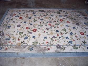 Area Rug Full Before
