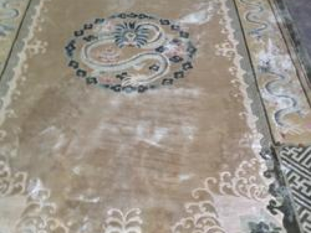 Oriental Rug Cleaning Before