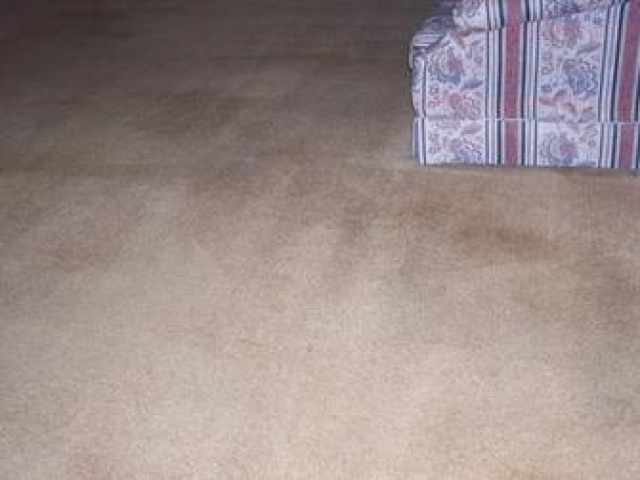 Living Room Carpet Cleaning After