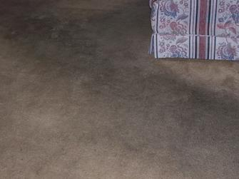 Living Room Carpet Cleaning Before